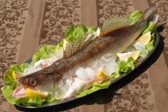 Hrana-konoba-27