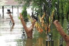 poplave-konoba-kod-goce-i-renata-115