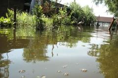 poplave-konoba-kod-goce-i-renata-133
