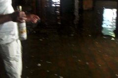 poplave-konoba-kod-goce-i-renata-179